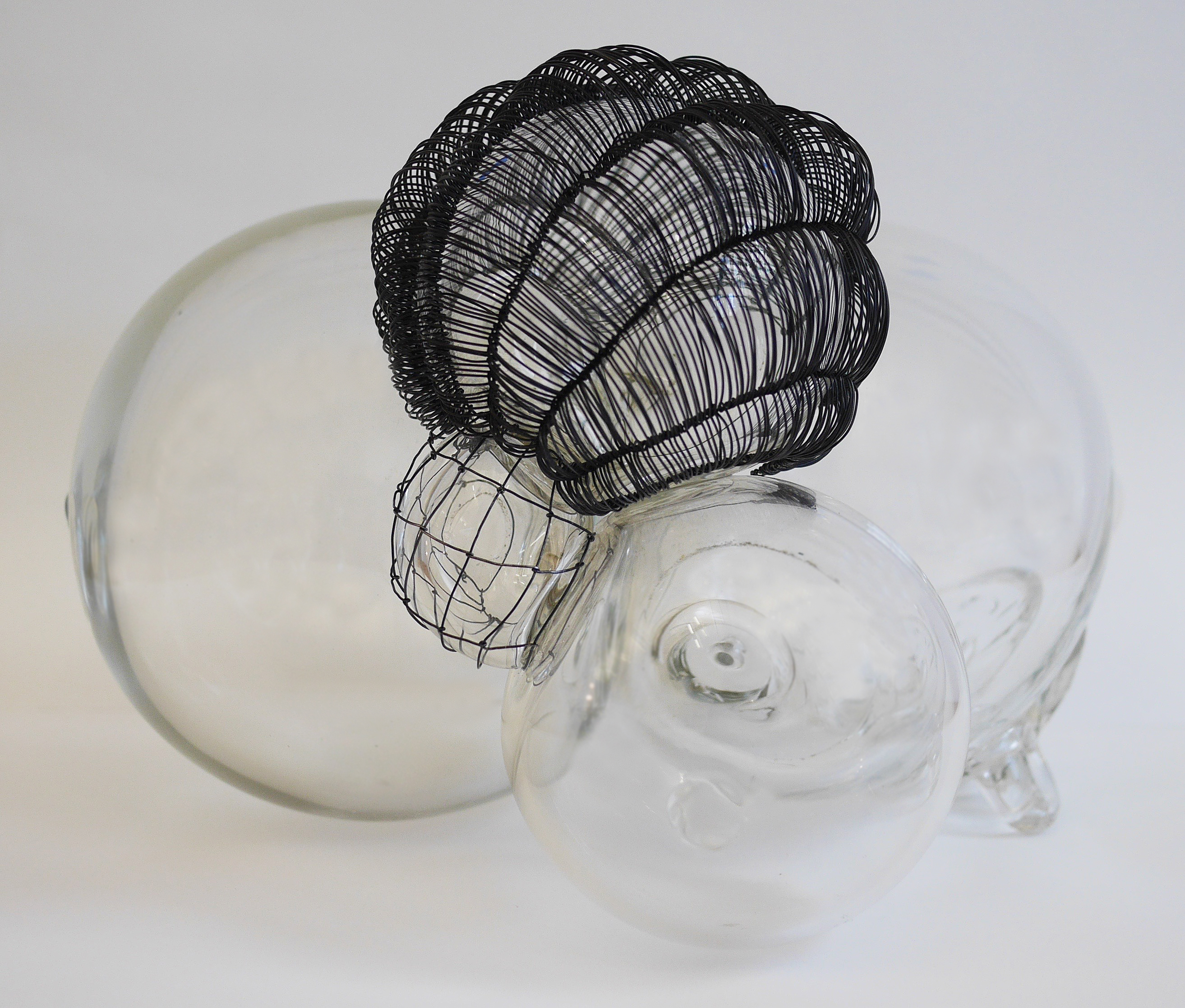 "Beth Dary, Caged 2, 2018, blown glass and steel wire, 8""h x 12""w x 12""d"